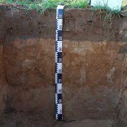 Bodenkartierung